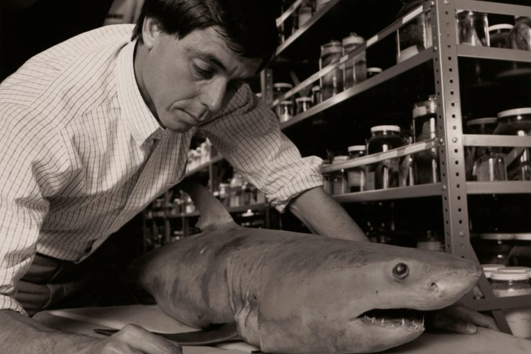 A marine biologist poses in his office with the HP 15C calculator.