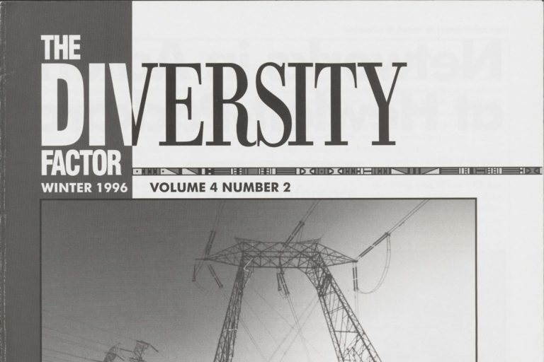 The cover of The Diversity Factor Winter 1996.